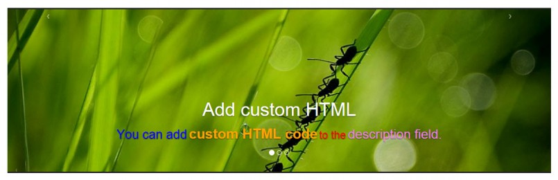Slider cell with custom HTML