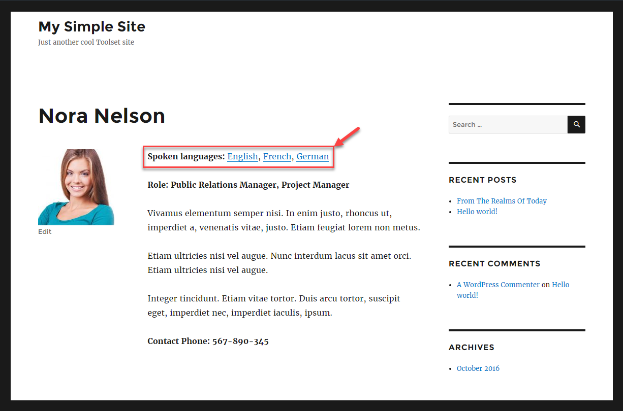Creating Templates For Custom Post Types Toolset