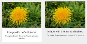 Bootstrap Thumbnail Effect Example