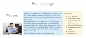 Example layout on the front-end. The layout front-end appearance reflects its backend design - 3 cells in a row.