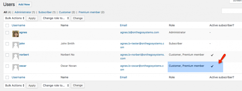 After successful purchase (related order is completed) a new user will appear in the Users panel: