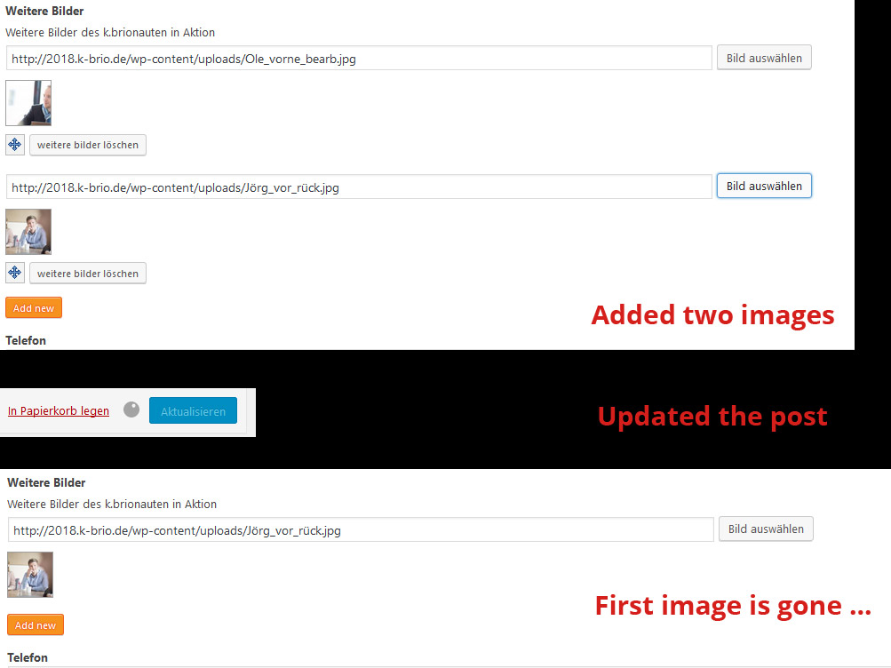 bug-with-multi-instances.jpg
