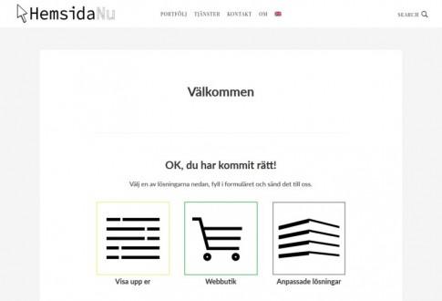HemsidaNu – Web Design and Development Company