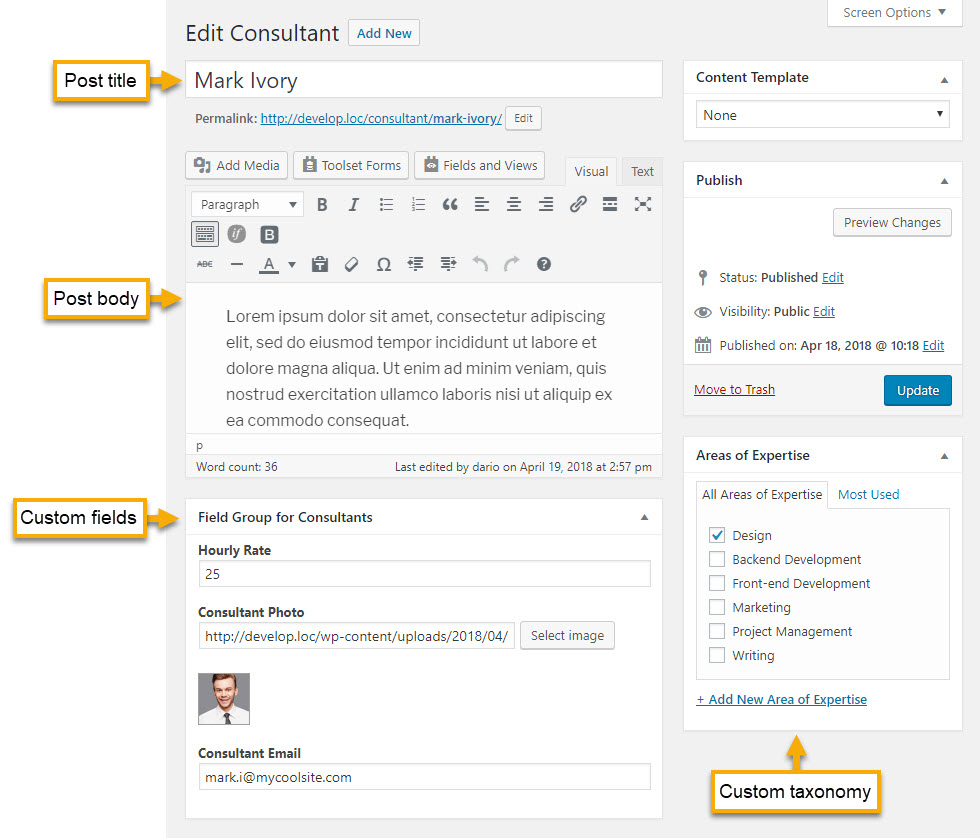 Post editor with standard WordPress fields