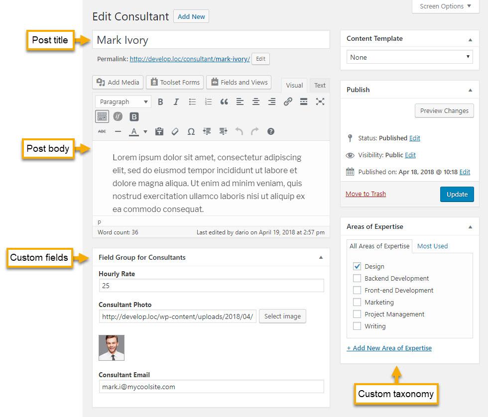 Post editor with standard WordPress fields