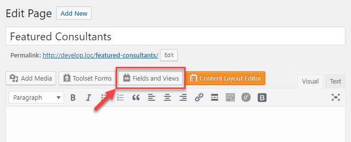 """Use the """"Fields and Views"""" button to insert a View the standard WordPress editor"""